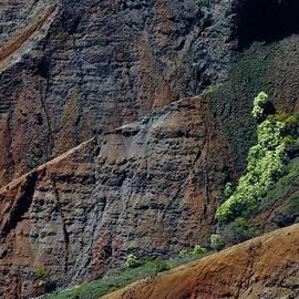 Heidi Fickinger - Waimea Canyon Detail