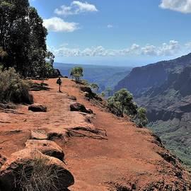 Heidi Fickinger - Waimea Canyon Kauai Island