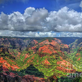 Waimea Canyon Too The Grand Canyon of the Pacific Kauai Hawaii Art by Reid Callaway