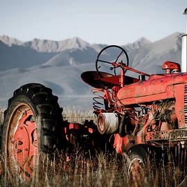 Jennifer Myers - Waiting to hay