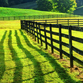 Walk along the Fence Shadows by Debra and Dave Vanderlaan