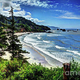 Walk Along the Seashore by Deborah Klubertanz