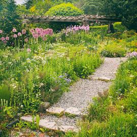 Jessica Jenney - Walk Among the Wildflowers