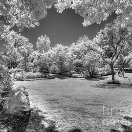 Jeff Breiman - Walking In Clark Gardens