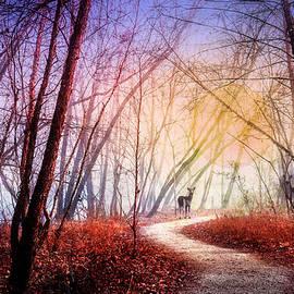 Debra and Dave Vanderlaan - Walking on the Trail