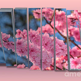 Walking Spring Blossoms - Panel Art by Kaye Menner