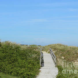 Walkway Maghera Donegal by Eddie Barron