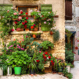 Wall Of Flowers by Uri Baruch