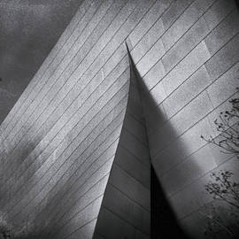 Denise Dube - Walt Disney Concert Hall 1