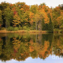 Rachel Cohen - Warm Autumn Reflections