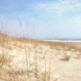 Warm Sand Dunes by Kelley Freel-Ebner