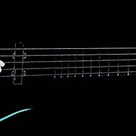 Chris Berry - Warwick Five String Bass