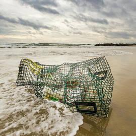Tony Baldasaro - Washed Ashore