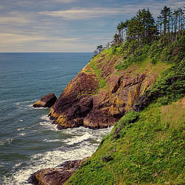 Joan Carroll - Washington Coastline near North Head Lighthouse