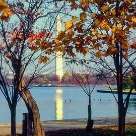 Bob Phillips - Washington Monument with Fall Foliage
