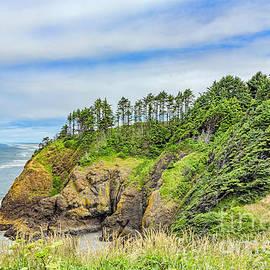 Jean OKeeffe Macro Abundance Art - Washington State Coastline