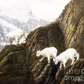 Watch Your Step Kids-Mt. Goats by Paul Henderson