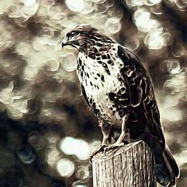 Watcher of the Wing by Susan Maxwell Schmidt