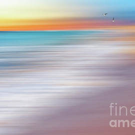 Water Abstraction II with Gulls by Kaye Menner