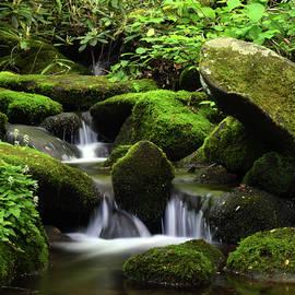 Water Between The Rocks by Pat Turner