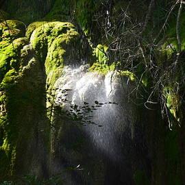 Water Fall bathed in light by Brigitta Diaz