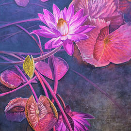 Fiona Craig - Water Lily Pond