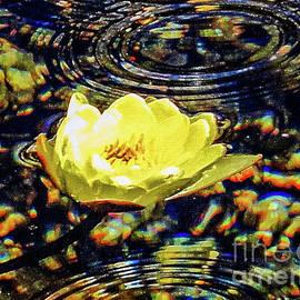 Mona Stut - Water Lily Pond Golden Ripples
