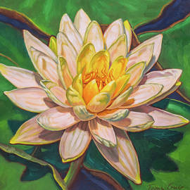 Fiona Craig - Water Lily Study 2
