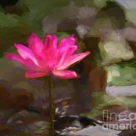 Water Lily Summer. by Minnetta Heidbrink