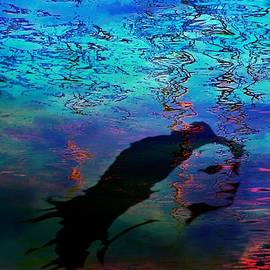 Water Muses Underwater Fantasies by Mike Breau