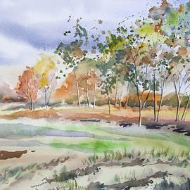 Cascade Colors - Watercolor - Autumn Birch Landscape