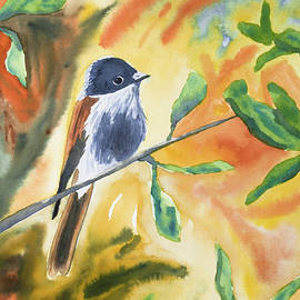 Watercolor - Delicate Perching Bird by Cascade Colors