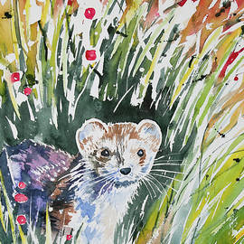 Cascade Colors - Watercolor - Ermine with Autumn Foliage