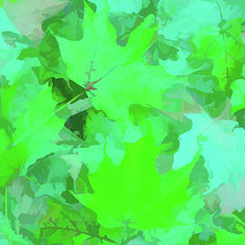 Aimee L Maher Photography and Art Visit ALMGallerydotcom - Watercolor Green Leaves