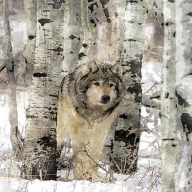Wildlife Fine Art - Watercolor Wolf