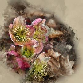 Matthew Gibson - Watercolour painting of helleborous flower in Spring in forest
