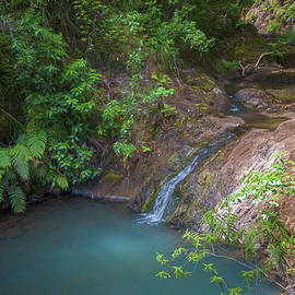 Joan Carroll - Waterfall Great Barrier Island New Zealand