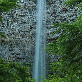 Watson Falls by Brenda Jacobs