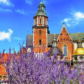 Mariola Bitner - Wawel Cathedral