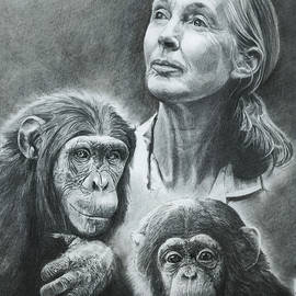 We Are Family Jane Goodall