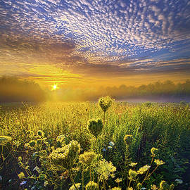 Phil Koch - We Shall Be Free