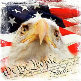Melissa Bittinger - We The People, Eagle and American Flag
