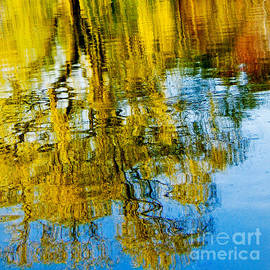 Autumn Impressions on Reflective Lake Wall Art by Carol F Austin