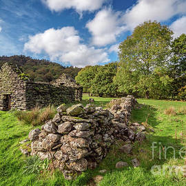 Adrian Evans - Welsh Cottage Ruin