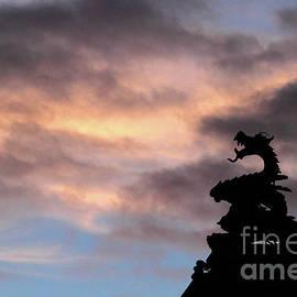 James Brunker - Welsh Dragon at Sunset 1