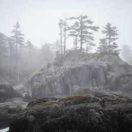West Coast Landscape Ocean Fog IIi by Roxy Hurtubise
