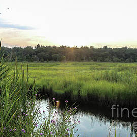 West Creek Sunset by Colleen Kammerer