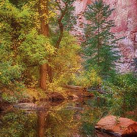West Fork of Oak Creek Reflection by Priscilla Burgers