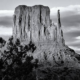 Nicholas Blackwell - West Mitten Butte Black and White