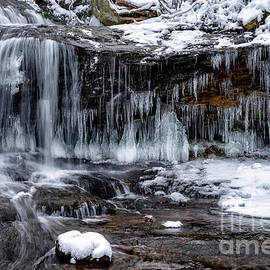 Thomas R Fletcher - West Virginia Winter Waterfall